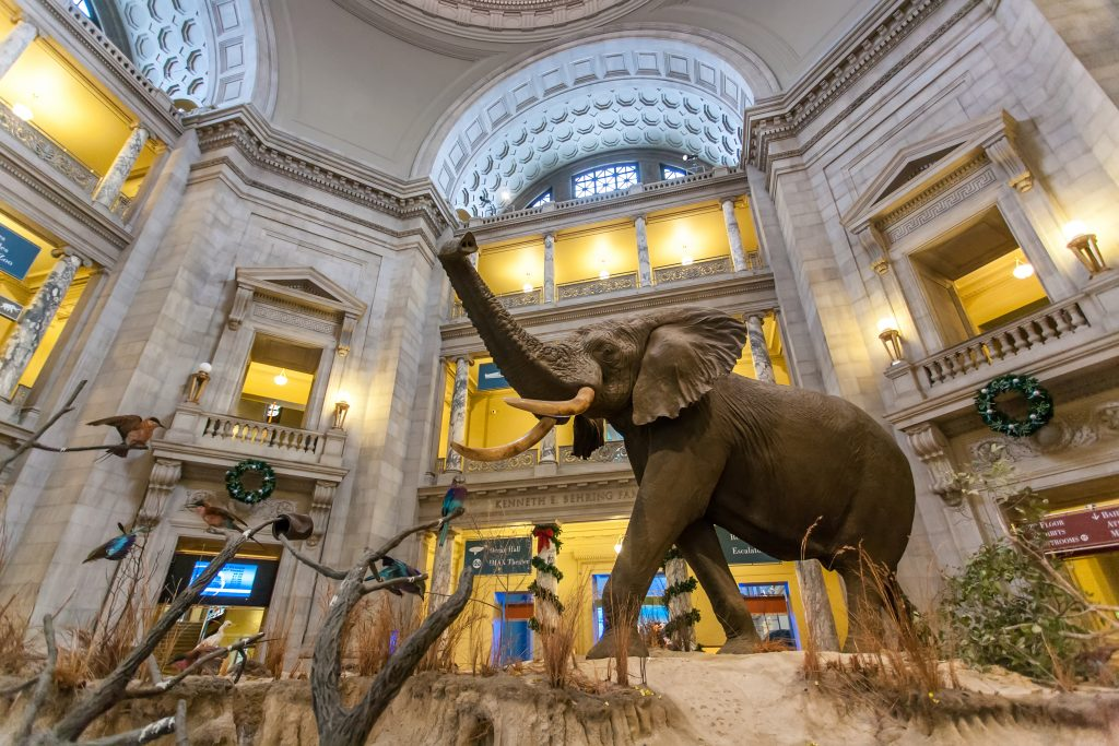 Smithsonian Museum Virtual Tours featured by top BIPOC family travel blogger, Momma Wanderlust