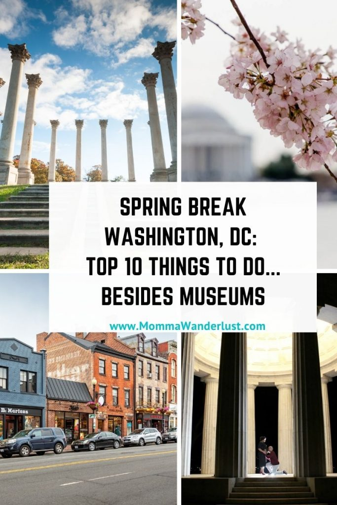 Spring Break in Washington, DC: Top 10 Things to do featured by top BIPOC family travel blogger, Momma Wanderlust