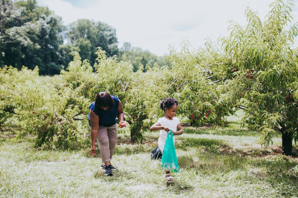 the Best Things to Do in Orange VA featured by top US family travel blogger, Momma Wanderlust